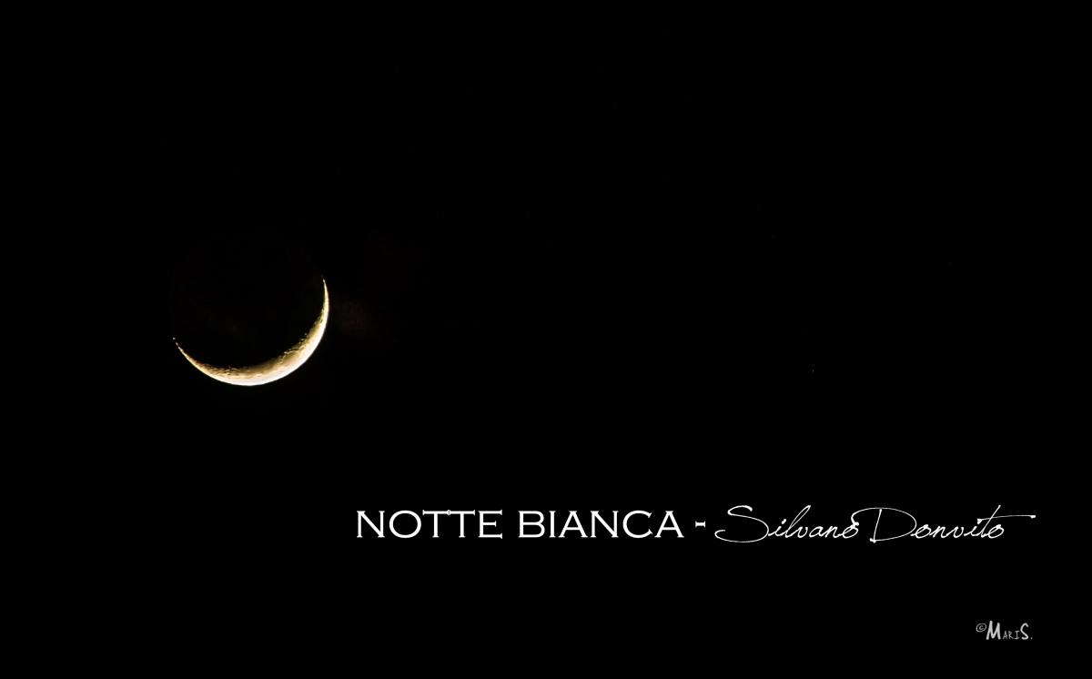 2)Notte Bianca-SILVANO